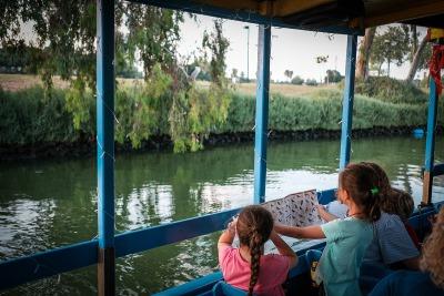 שקיעה וחיים באגם בגני יהושוע