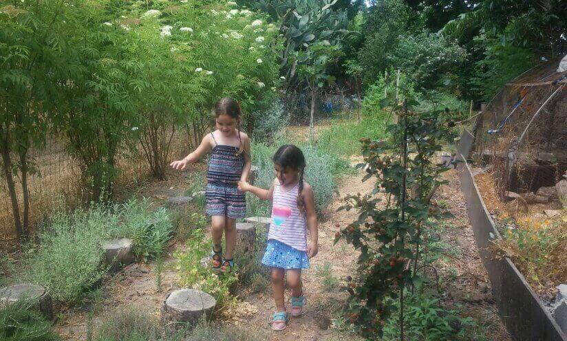 תבלין בגן קטיף לכל המשפחה - לגדול