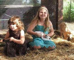 גן גורים-פינת חי לילדים-פינת ליטוף והאכלה