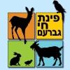 לוגו- פנינת החי- קיבוץ גברעם