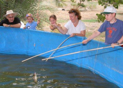 בריכת קרפיון בדג בכפר אתר דיג בצפון