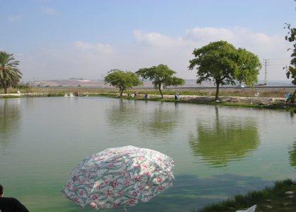 דג בכפר אתר דיג למשפחה סיורים מודרכים אתר לגדול