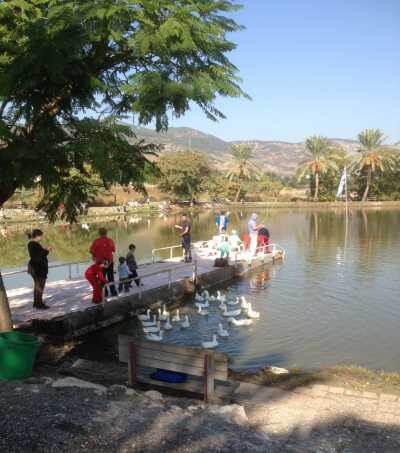 דג בכפר אטרקציות לילדים ולכל המשפחה