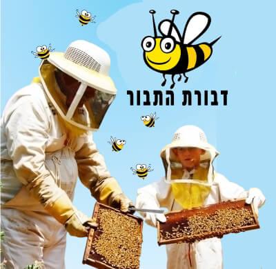 דבורת התבור, סיורים מודרכים, אתר לגדול אתר המשפחות של ישראל