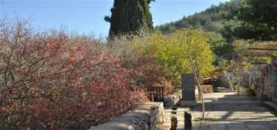 מוזיאון עין יעל, סיורים וממצאים ארכאולוגים