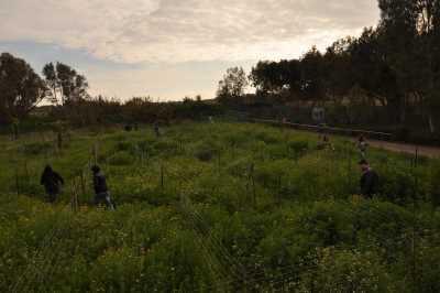 gameland גיים לנד מבוך משימות וניווט