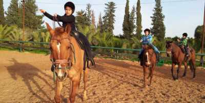 חוות המאלף רכיבה טיפולית לילדים- אתר לגדול