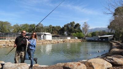 דייג בדגי דפנה