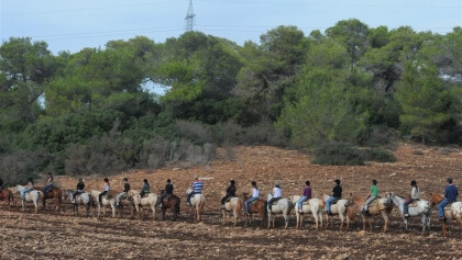 טיולי סוסים בחווית הרוכבים בצפון