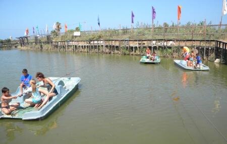 פארק הדיג