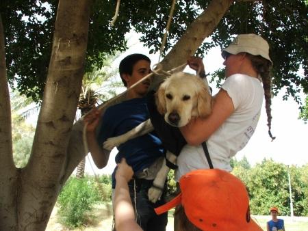 מדהים כלביית אפיקים, פעילויות לילדים, קייטנת פסח, קייטנת קיץ אטרקציות MM-01
