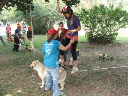 קייטנות קיץ 2019, כלביית אפיקים, קייטנת כלבים