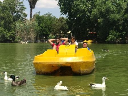 אגם חי יראון, שייט בסירות פדלים
