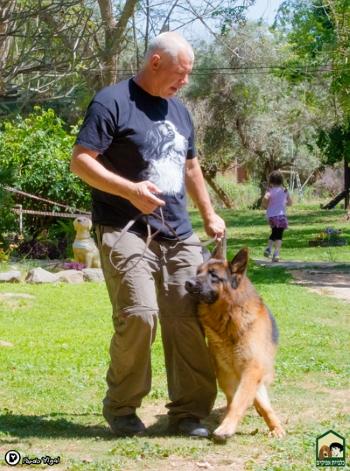טוב מאוד כלביית אפיקים, פעילויות לילדים, קייטנת פסח, קייטנת קיץ אטרקציות CL-75
