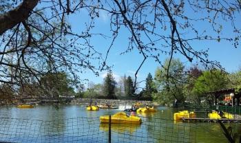 אגם חי יראון