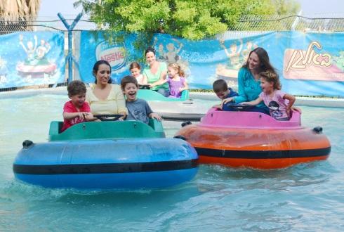 פארק באלגן  מכוניות מתנגשות במים