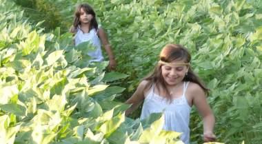 החווה תל אביב