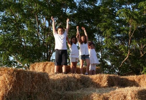אירועי שבועות בחווה תל אביב