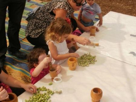 סוכות בחווה תל אביב