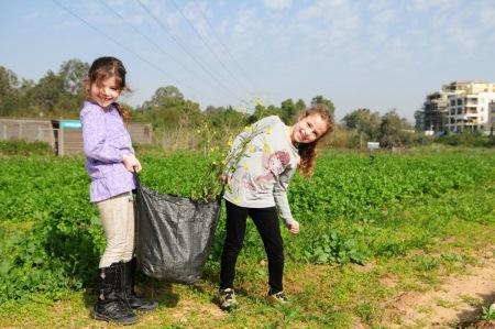 """ט""""ו בשבט בחווה תל אביב"""