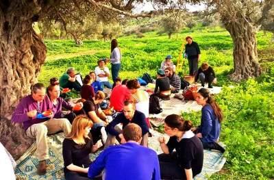 מסע צייד פטריות בר למאכל בגלבוע - צ'יף העשבים - לגדול
