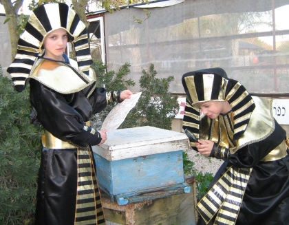 פסח בדבורת התבור - לגדול