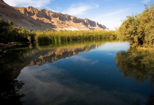 שמורת טבע עינות צוקים