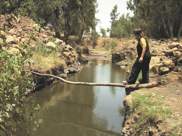 מסלולי מים לשבועות בגולן