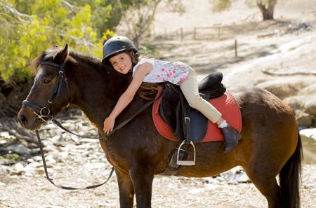 טיולי סוסים בשפלה