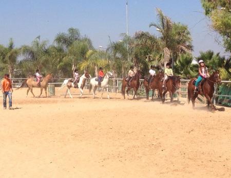 טיולים, חוות סוסים, תעוז, ילדים, רומנטי, זוגות, משפחתי, רכיבה על סוסים