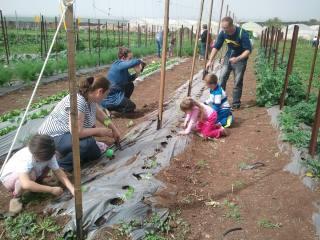הקרקס החקלאי נטיעות טו בשבט