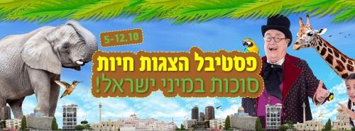 סוכות במיני ישראל