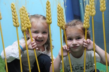 מוזיאון הילדים הישראלי בעקבות הפרפרים