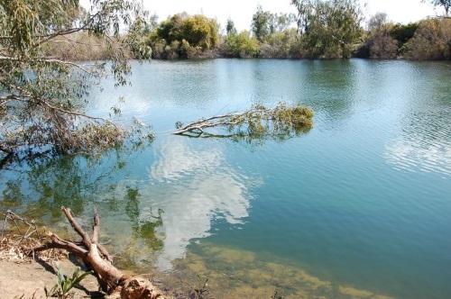 בקרוב: פארק אקולוגי חדש בראשל