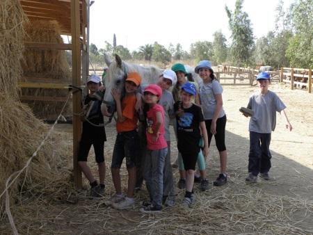 קייטנת קיץ חוות סוסי אדמה 2015 קייטנת רכיבה